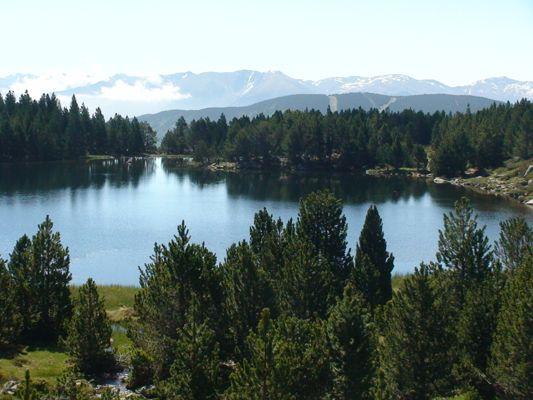 El lago de Viver