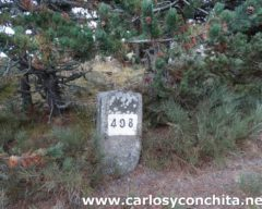 bornas496-501-0031